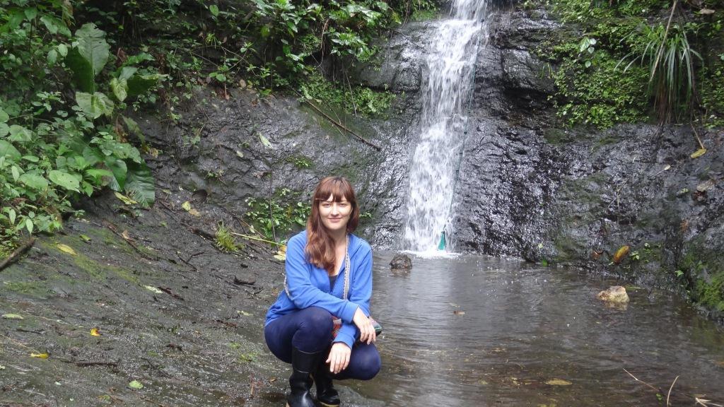Водопад в джунглях и я )